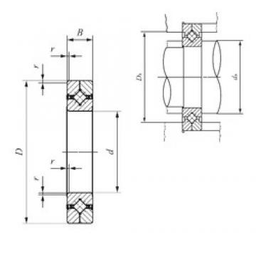 250 mm x 310 mm x 25 mm  IKO CRBC 25025 UU Rodamientos Axiales De Rodillos