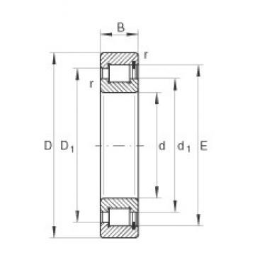 800 mm x 980 mm x 82 mm  INA SL1818/800-E-TB Rodamientos De Rodillos