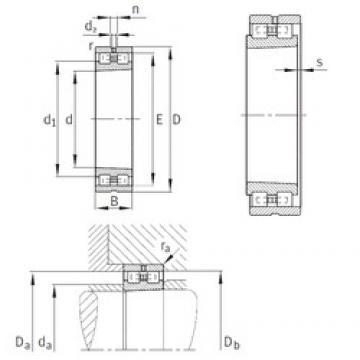 30 mm x 55 mm x 19 mm  INA NN3006-AS-K-M-SP Rodamientos De Rodillos